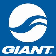 Logo Giant VAE
