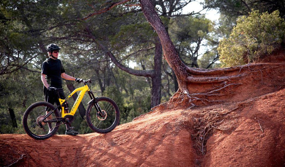 VTTAE Peugeot eMO2 FS