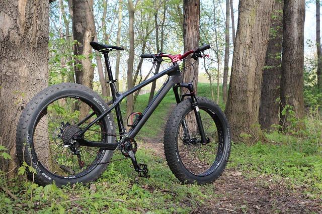 Fat bike en forêt
