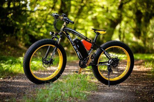 Fat Bike électrique Rich Bit Top 012